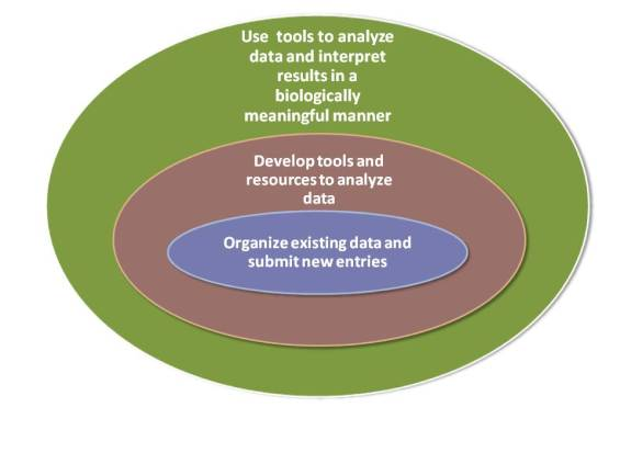 Three Fold Aim of Bioinformatics